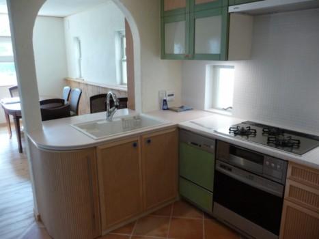 12-kitchen1.JPG