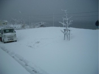 雪景色の現場